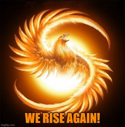 phoenix with words we rise again